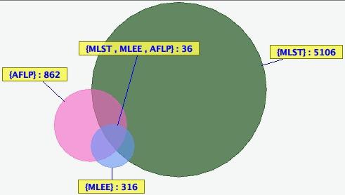 MLST+MLEE+AFLP Venn diagram